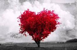 99-derroche-amor